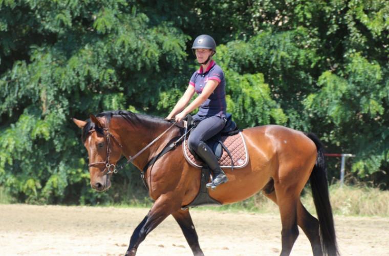 Sportul australian cu cai popular în întreaga lume