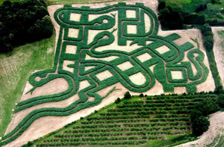 Poate vindeca un labirint?