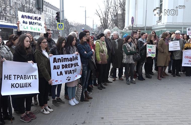 """""""Настало время защитить их!"""": Десятки людей вышли на протест перед Примэрией (ВИДЕО)"""