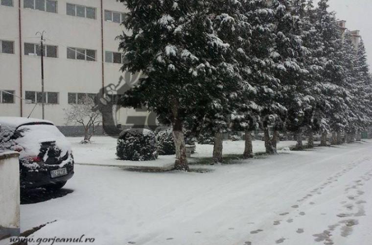 Vin ninsorile? Val de aer polar se îndreaptă spre Moldova