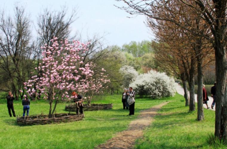 1 Mai - Ziua Muncii în Moldova