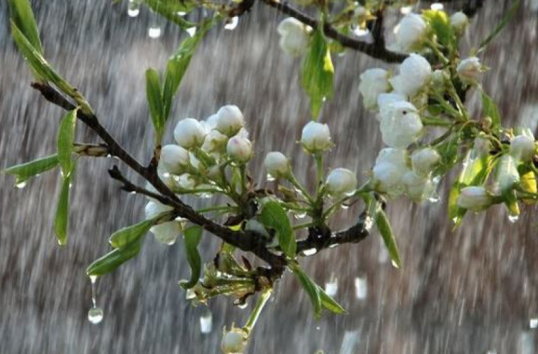 Scăpăm de ploi? Cum va fi vremea săptămîna viitoare
