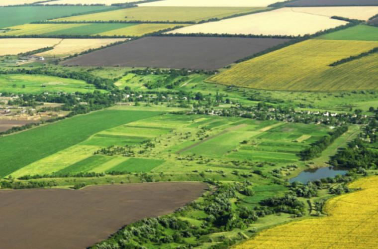 15% din terenurile agricole din Moldova sînt deținute de străini (VIDEO)
