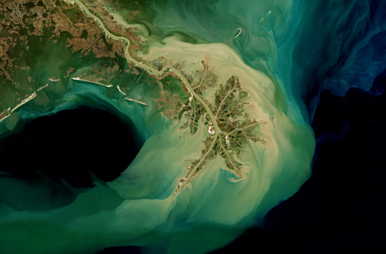 În Golful Mexic, vara se formează o zonă uriașă fără oxigen de dimensiunea Bahamelor