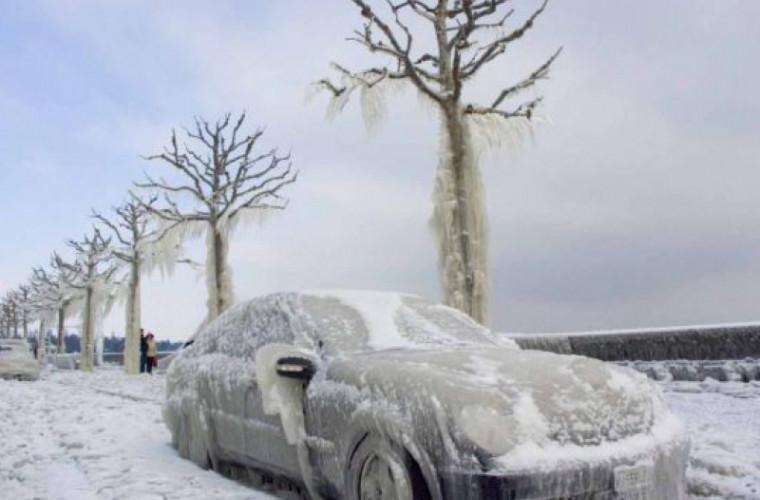 Siberia va deveni o destinaţie a refugiaţilor climatici
