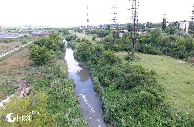 """""""Ecodava"""" cere Ministerului Mediului măsuri urgente pentru a opri poluarea rîului Bîc (DOC)"""