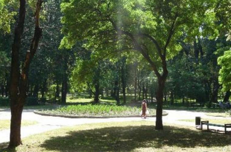 """Parcul """"Alunelul"""", renovat în proporție de 80%"""