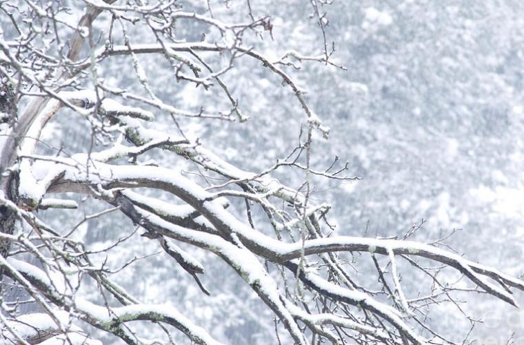 Iarnă la început de toamnă: În Italia a nins deja (VIDEO)