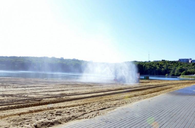 """Plaja lacului din Parcul """"Valea Morilor"""" devine mai curată"""
