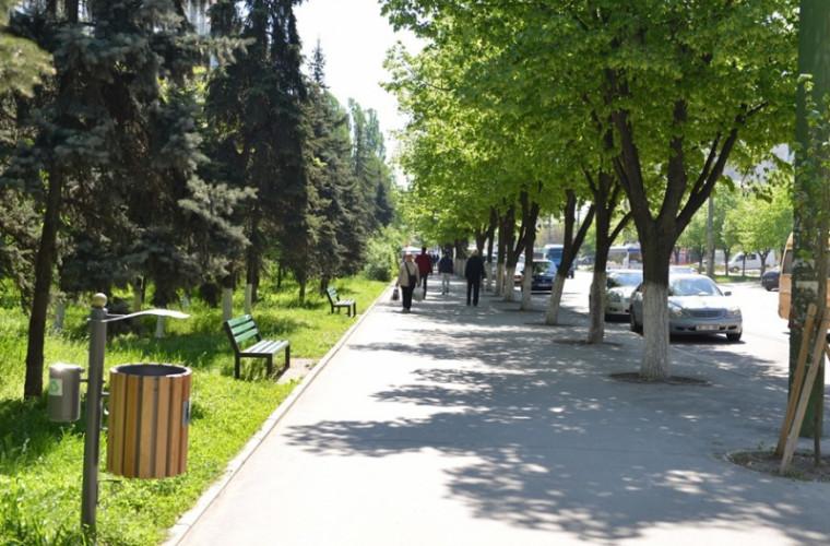 Pe strada principală a capitalei vor apărea coșuri de gunoi