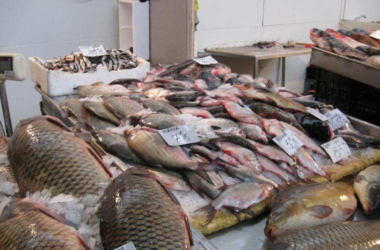 Comercianții de pește din Chișinău, instruiți de ANSA