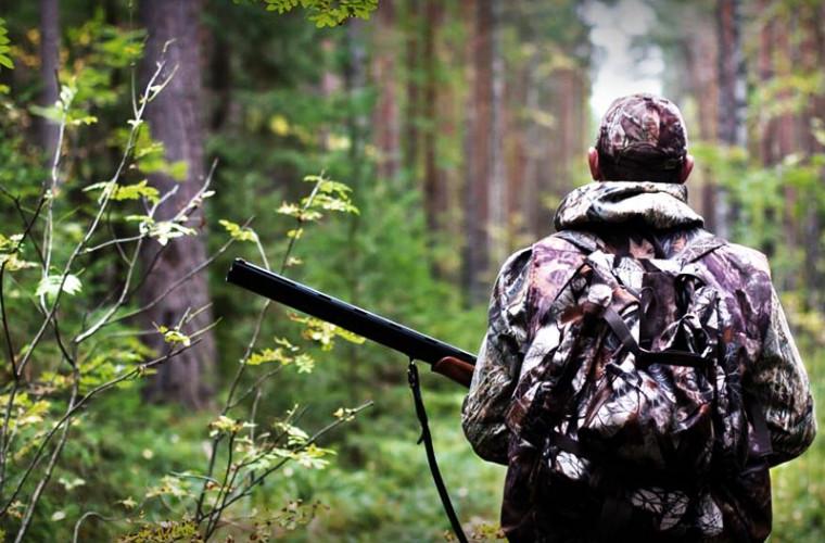 Охота пострелять