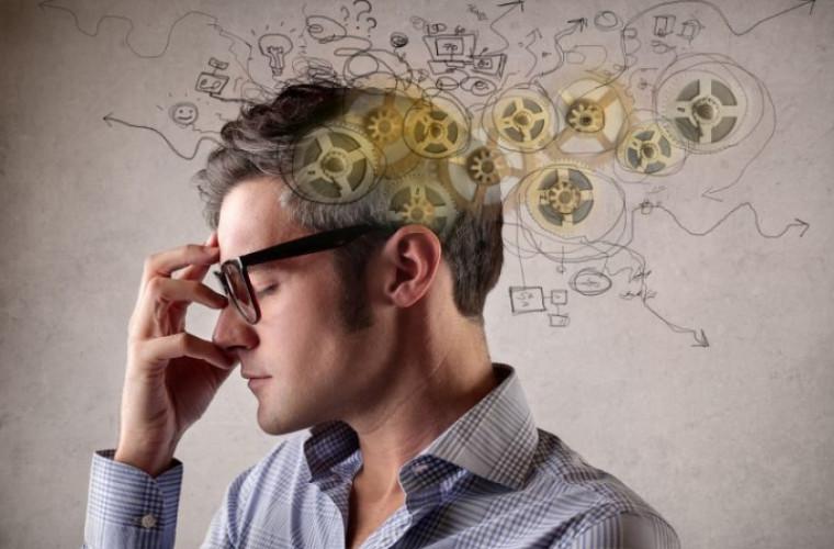 Plante care îmbunătățesc memoria și concentrarea
