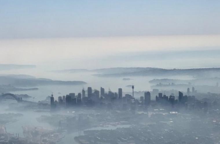 Сидней затянуло дымом из-за масштабных лесных пожаров в Австралии