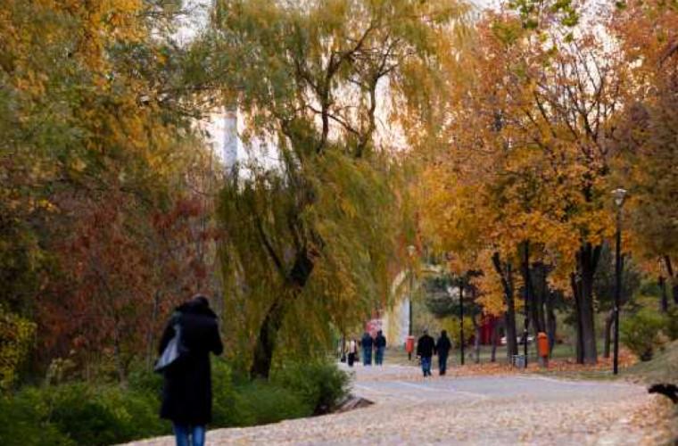 Crezul moldovenilor. Tineretul şi politica