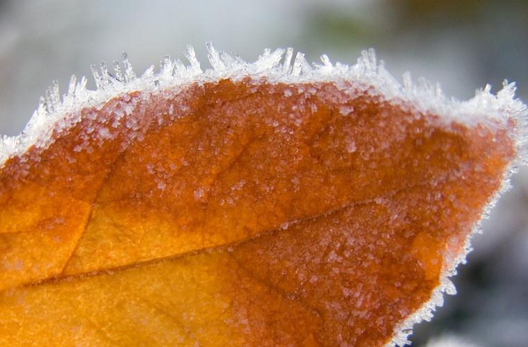 Meteo 13 decembrie: Lapoviță și maxime de +10 grade