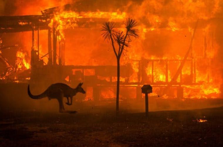 Incendiile din Australia vor provoca turismului pierderi de miliarde de dolari
