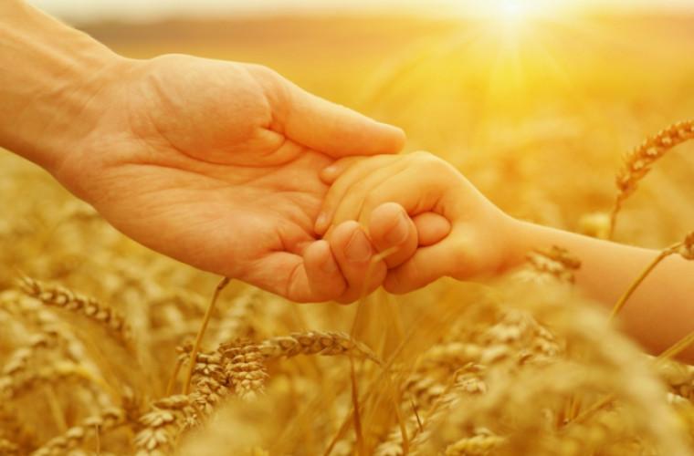 tatii-cu-patru-si-mai-multi-copii-ar-putea-fi-asigurati-medical