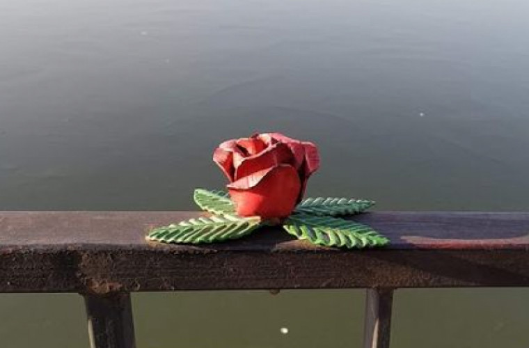 Spaţii Verzi - о железной розе, украденной в парке Валя Морилор
