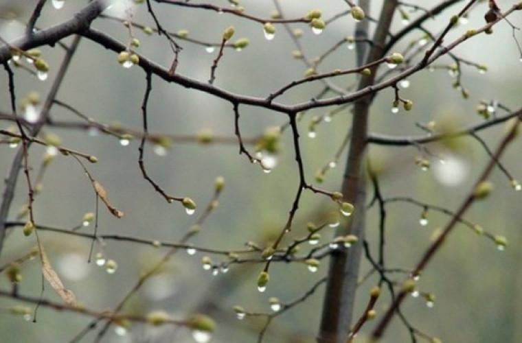 Prognoza meteo pentru 20 aprilie: Ploile nu contenesc