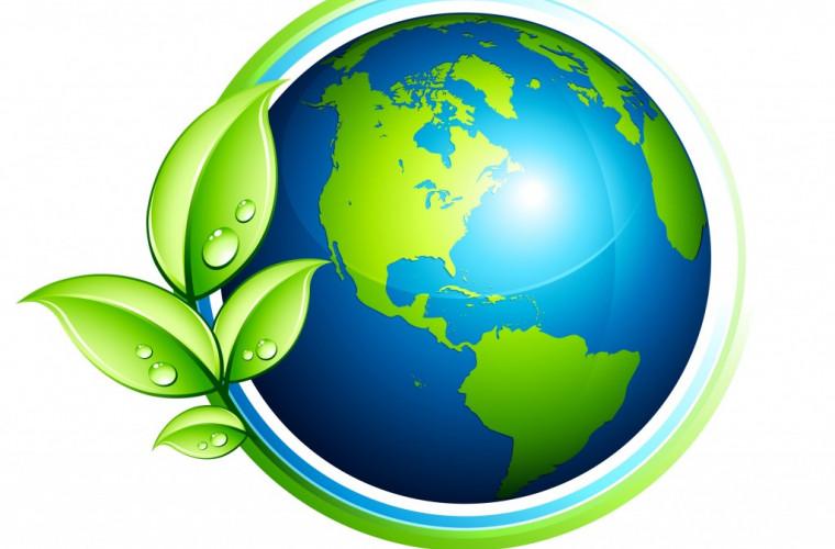 """Ecology și EcoDava au participat la acțiunea internațională """"Ziua mea a Pămîntului"""" (VIDEO)"""