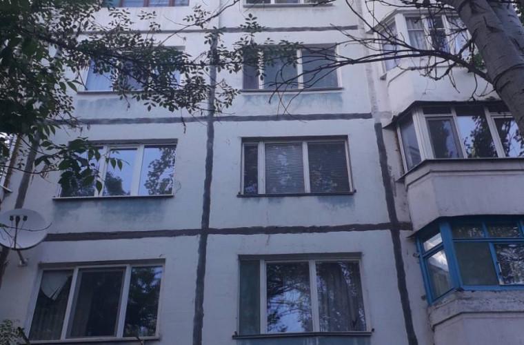 """Pericolul a fost înlăturat: Copacul """"buclucaș"""" din strada Cuza Vodă, în atenția autorităților (FOTO)"""