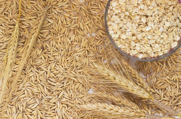 Stocurile mondiale de grîu ar urma să ajungă la un nivel-record în acest an
