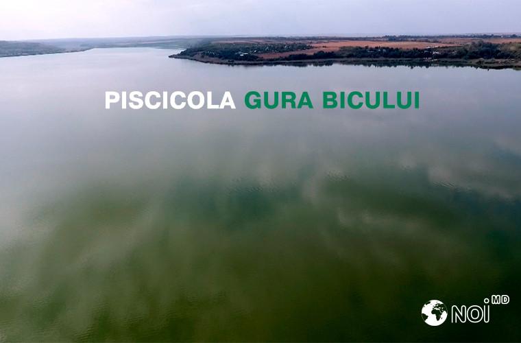 «Piscicola Gura Bîcului», petrece timpul frumos în Moldova