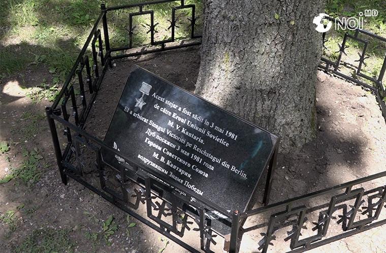 la-chisinau-a-fost-inaugurata-o-placa-comemorativa-despre-sadirea-unui-copac-de-catre-un-erou-al-marelui-razboi-pentru-apararea-patriei-video