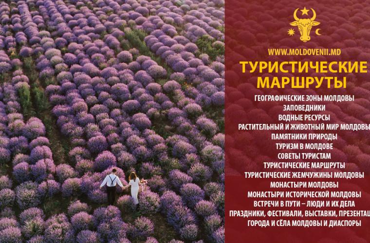 otkrojte-moldovu-zapovednik-yagorlyk-s-bolishim-chislom-redkih-vidov-ptic