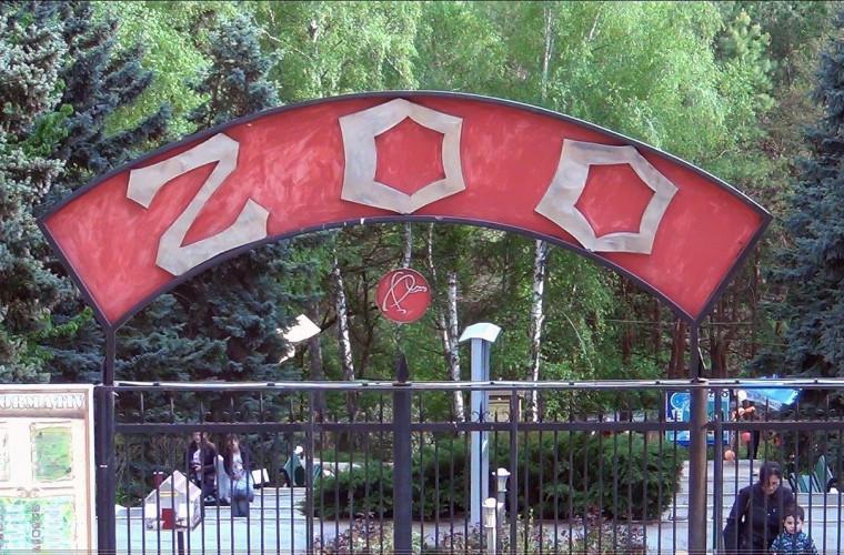 v-chem-podozrevayut-direktora-kishinevskogo-zooparka