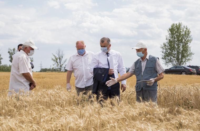 """Declarație: """"Chicu a făcut pentru agricultori mai mult decît toți prim-miniștrii anteriori"""""""