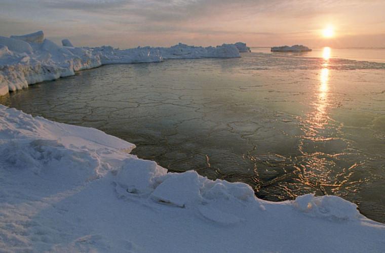 Oamenii de știință au confirmat cea mai rea consecință a catastrofei climatice