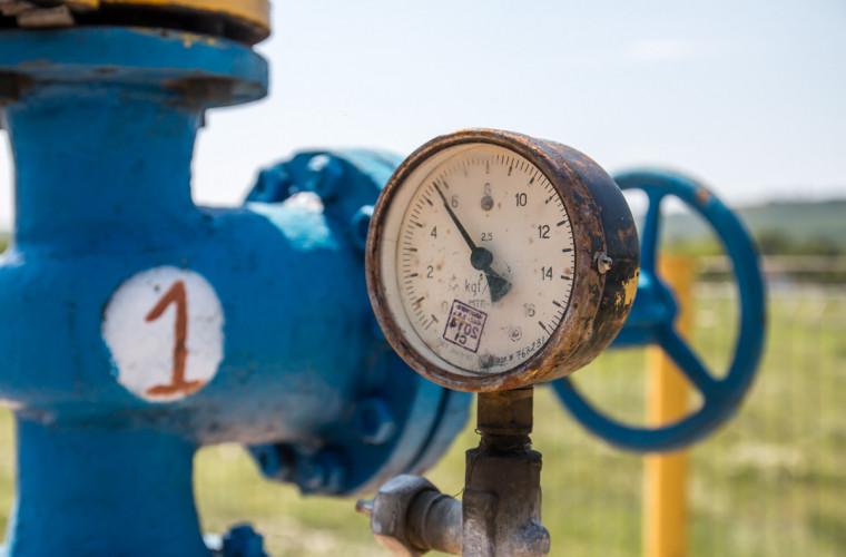 cite-gaze-au-fost-consumate-in-moldova-in-luna-august-si-cine-este-cel-mai-bun-platitor